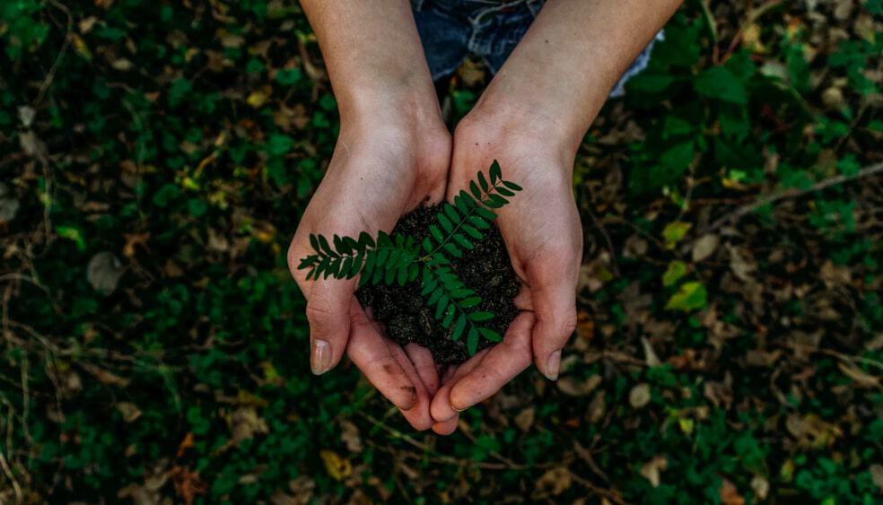 sustainable ecommerce